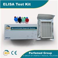 Anti-CCP Rhumatoid Arthritis Test Kit(ELISA)