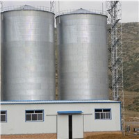 Customized Hot Galvanized storage silo