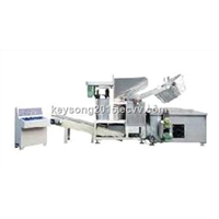 Automatic Stainless Steel Fryer for Snacks Food
