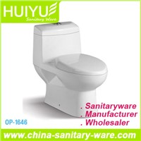Self-Cleaning Washdown One-Piece S-Trap Toilet