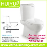 Washdown Back to Wall Two Piece Ceramic Toilet