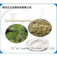 100% Natural Astragalus Root Extract Cycloastragenol 98%