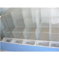 hot dipped galvanized welded mesh panels iron mink cage Animal Cage Mink Cage