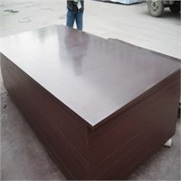 phenolic brown  film faced plywood manufacturer
