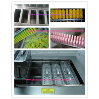 Ice cream freezer mould stainless steel Ice lolly frozen machine mould with stick holder