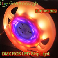 LED Digital Strip Light With TM1809IC/RGB Flexible LED Waterproof Strip Light 5050SMD 7.2W