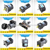 AC Motor 3 W to 200W