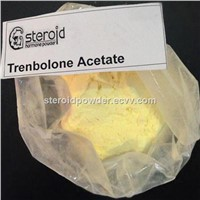Anabolic Steroids Trenbolone Acetate Injection 100 mg/ml