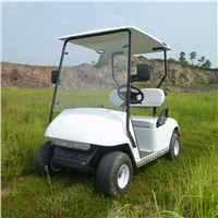 2 Seats Golf Cart Powered by Gas From Zhejiang China for Sale