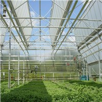 Roof Full Opening Greenhouse