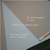 Different Size Paper Faced Gypsum Board for Exterior Interior Wall Panel