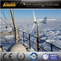 Small Wind Power Generator (MINI 300W)-3 blades