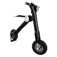 Ryno 48V Folding E-Bike with Lithium Battery