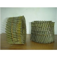 china market screw coil nails