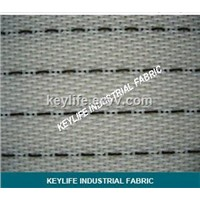 Polyester Anti-Static Mesh for NonWoven Cloth Production