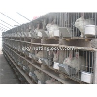 Electro galvanized wire steel pet rabbit cage