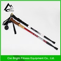 protection walking cane/ hiking pole / walking pole