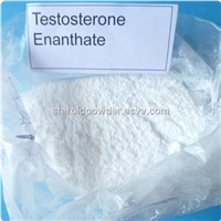 Pharmade Testo-enant Muscle Building Testosterone Enanthate Steroid Powder