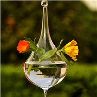 Creative Cone Shaped Glass Terrarium Hanging Glass Vase Wedding Decorative Party Opps China Supplier