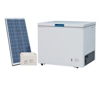 12/24V DC Compressor Solar Mini Freezer
