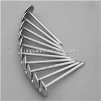 Hot sale galvanized umbrella head roofing nails
