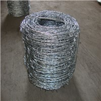 Electro Galvanized Barbed Wire