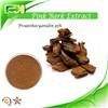 Pine bark extract Proanthocyanidin 95%