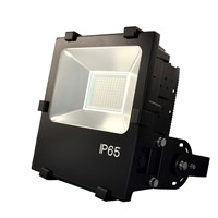 Driverless Dimmable LED Flood Light/Pccooler LED Street Lighting MN07 100W