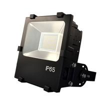 Driverless Dimmable LED Flood Light/Pccooler LED Street Lighting MN07 100W