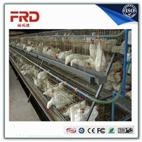 Furuida Automatic Battery Chicken Cage For Layer Chicks