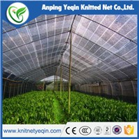 Anping Manufacturer  High Strength High Quality Agricultural Sunshade Net