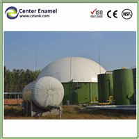 Center Enamel Biogas Plant Fermentation Tank