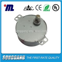 4W Small AC Synchronous Motor 49tyd for Tower Cooling Fan