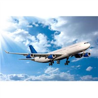 Global air freight forwarder for fasting air cargo freight
