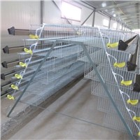 Industrial Battery Quail Laying Cage Net
