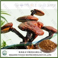 China Herbal extract 10% reishi polysaccharides ganoderma lucidum extract Supplier