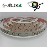 high CRI and high lumen SMD5050RGB+2835W 96LED 24V RGBW LED Strip Light