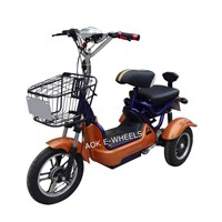Two Seat Electric Mobility Scooter with Basket (TC-013)
