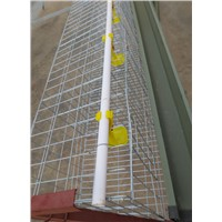 A type 4-Tier Chicken Layer Poultry Battery Cage
