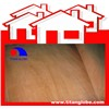 Face Veneer In Plywood Manufacturing