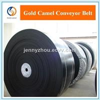 hemical resistant conveyor belt Acid & Alkali Resistant Conveyor Belt