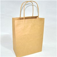 cheap price plain kraft paper bags with twisted paper handle