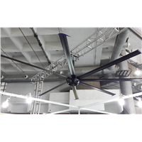 DC Motor Large Ceiling Fan in Gyms