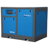 Gold supplier top grade stylish Variable Speed Screw Compressor