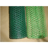 PVC Coated Hexagonal Bird Cages Wire Mesh Rolls for Chicken Cages