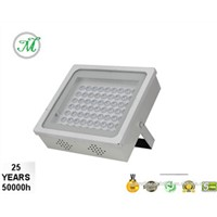 120W ETL Outdoor LED Canopy Light with meanwell driver