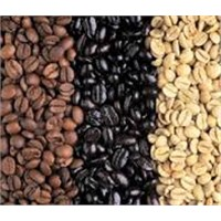 Natural organic Roasted Coffee Bean