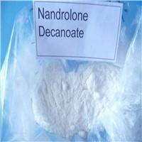 Androgen Anabolic steroids Nandrolone Deca CAS : 360-70-3 Durabolin Nandrolone Decanoate/ DECA