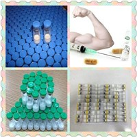 98% Injectable Growth Hormone Releasing Peptide GHRP-6 CAS 87616-84-0 for Muscle Building & Fat Loss