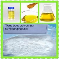 Primoteston Injectable Steroid Liquid Test En Testosterone Enanthate CAS 315-37-7
